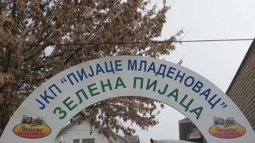 "JKP ""Pijace Mladenovac"""